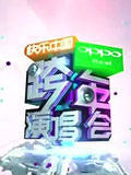 湖南卫视2012跨年晚会