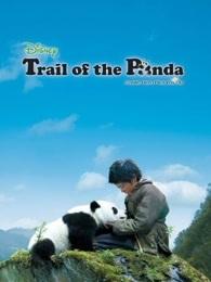 熊猫回家路(英语)