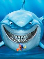 点击播放《海底总动员》