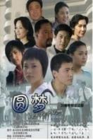 圆梦(全20集)