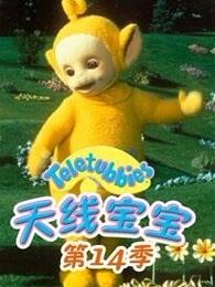 天线宝宝第14季中文版