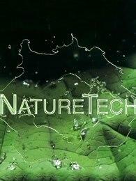 自然科学—工程师在大自然完美设计中寻找灵感