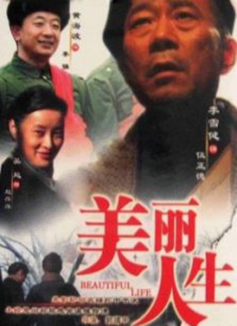 美丽人生(2008)