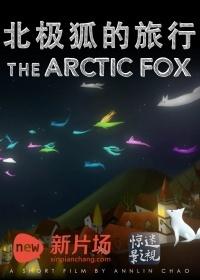 北极狐的旅行