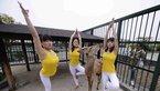 长沙上演动物瑜伽秀 以鹿为伴与鸟为舞