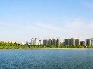 秋天的坝上,中国最美,不可忽略的一抹金黄