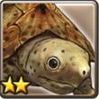 喷水龟.png