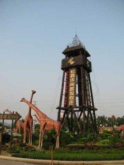 顺德长鹿农庄童话动物王国突破了世界传统动物园模式,长颈鹿家族正