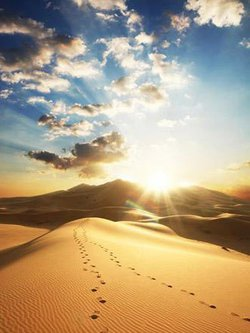中亚和中国塔里木盆地属典型的温带沙漠气候