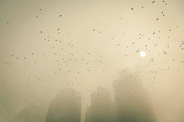 雾霾防护常识1.jpg