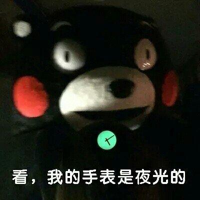 熊本熊污王表情包9.jpg