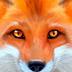 终极狐狸模拟安卓版(apk)