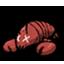 美味龙虾.png