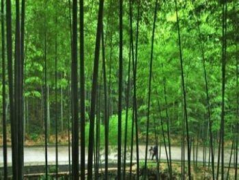 宜兴竹海风景区,旅游酒店