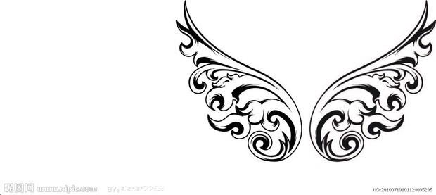 天使的翅膀的图片