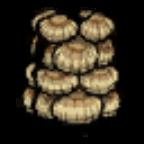 海贝盔甲.png