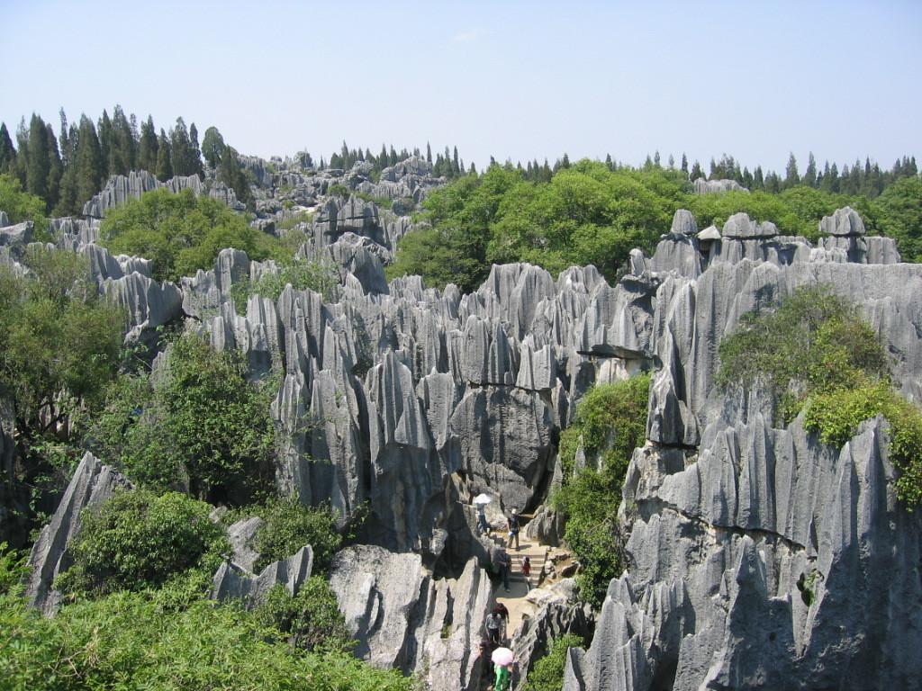 区的是:石林风景区