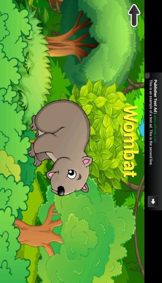 寻找隐藏的动物在非洲或澳洲的丛林和森林