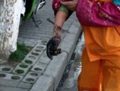【转】北京时间      心疼!0℃的无锡街头 环卫工用双手疏通下水道 - 妙康居士 - 妙康居士~晴樵雪读的博客