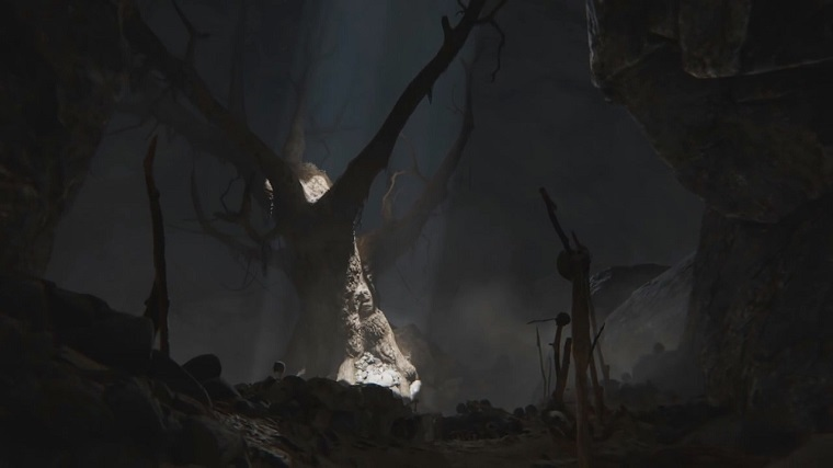 洞穴中的古树