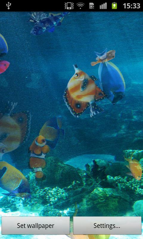 海洋鱼类 动态桌布