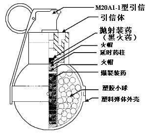 皮肤分析结构图