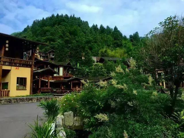 绥阳 多彩贵州(一)游贵州绥阳红果树生态旅游风景区之天生桥20131012