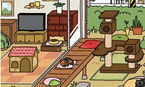 猫咪后院特殊猫喜欢什么道具?特殊猫喜好道具推荐!