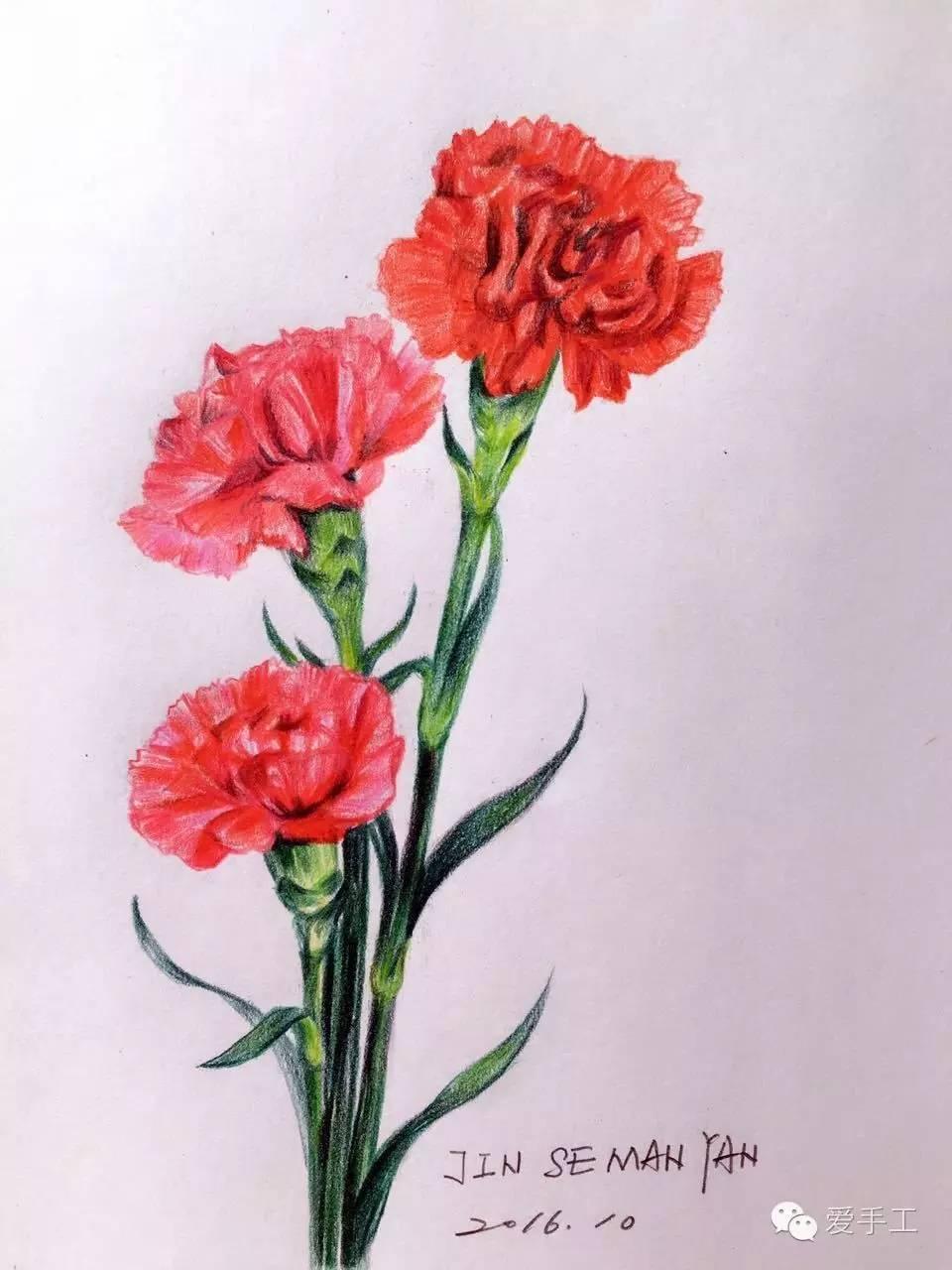 第一课:玫瑰花 课程内容 玫瑰花,蝴蝶兰,郁金香,玉兰花,康乃馨,木棉花