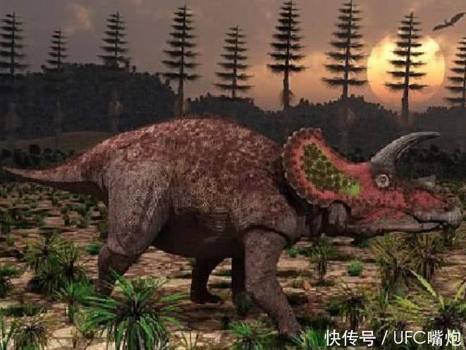 6种传闻存在的动物,第4种被猎捕过,或是远古生物