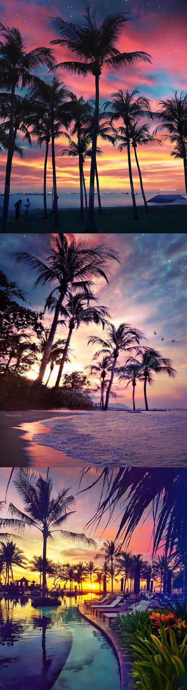 沙滩日落和星辰,你想和谁体验一回? - 谭笑古今 - 谭笑古今