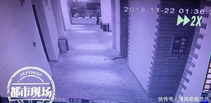 抚州房产网-抚州男子带2条蛇在酒店浴缸里玩耍,被咬毒发身亡......