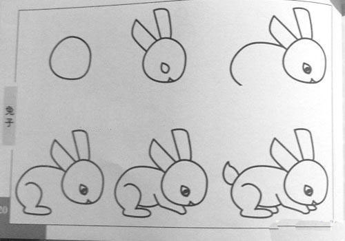 兔子怎么画一步一步教_一步一步教我画兔子图片