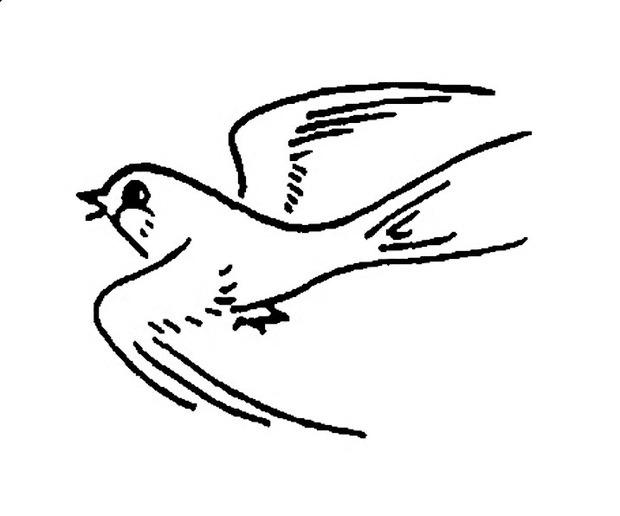 小燕子儿童简笔画如何画