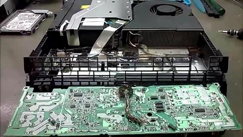 国外玩家维修PS4惊现死蛇