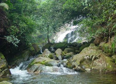 平坛海岛国家森林公园