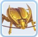 黄金虫.jpg