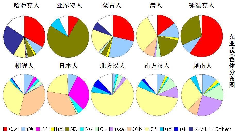东亚Y染色体单倍群分布图