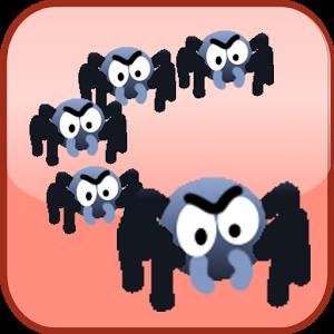 Spider Family
