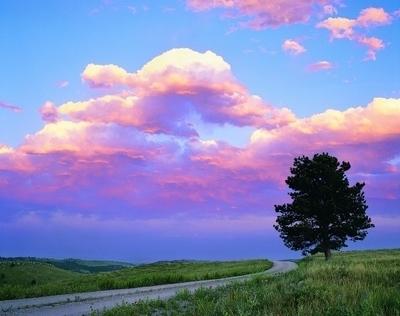 清晨太阳从东方升起,或者傍晚太阳落山的时候,太阳光射到地面上,穿过