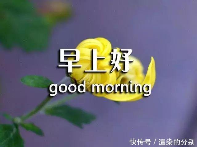 早安心语尽今天的努力活在当下,别让明天的你,讨厌今天的自己