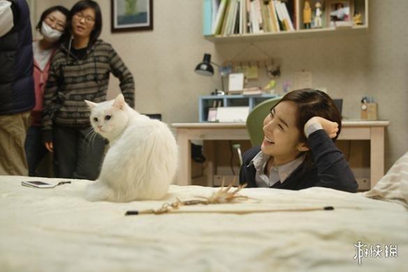 《旅猫日记》边撸猫边旅行