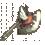 圣斗士之斧.png