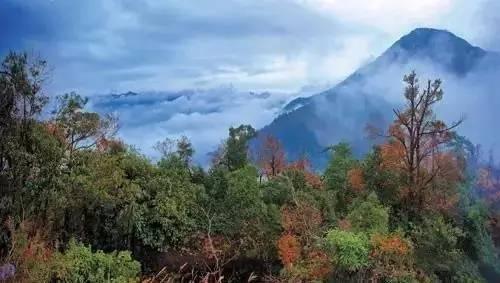 大茅山风景区,4a级国家级景区,地处江西省东北部,离德兴市区五十公里.