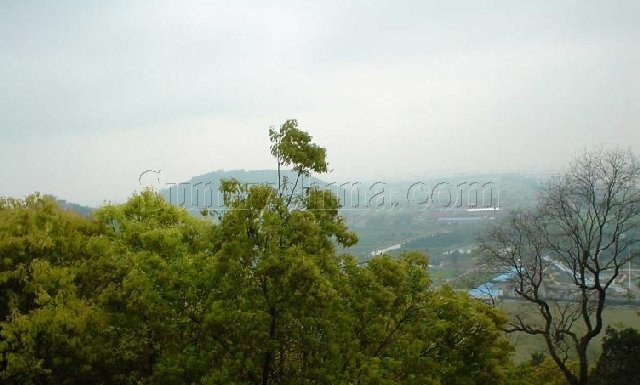 军山,剑山,马鞍山,黄泥山(包括啬园)合称狼山风景名胜区,是江苏省省级