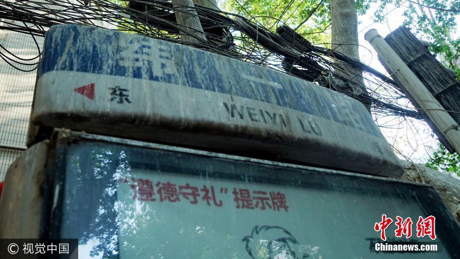 """【转】北京时间       郑州一道路被称""""天屎之路"""" 树下鸟粪密集 - 妙康居士 - 妙康居士~晴樵雪读的博客"""