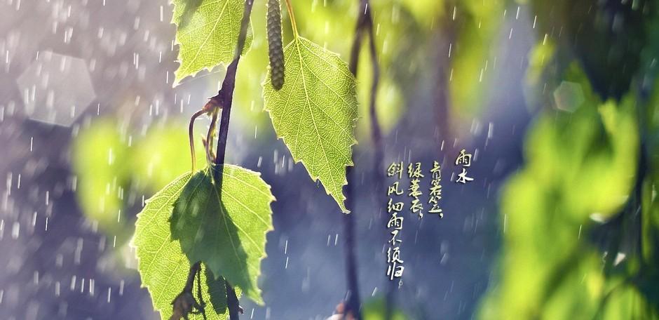 幼儿春天下雨图画大全大图