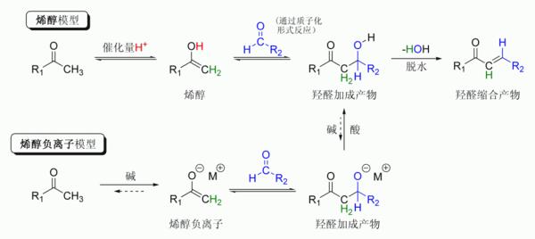 或酮)分子的羰基氧原子上