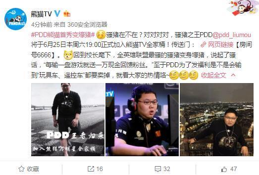 PDD6月25日熊猫TV首播