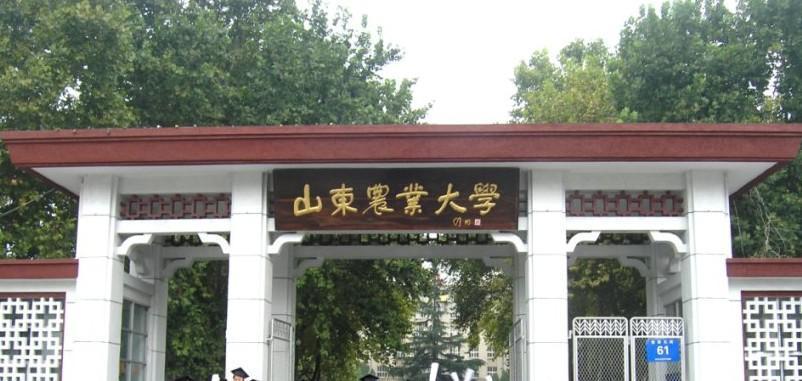 山东农业大学本部怎么拉校园网图片